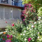 Гостевой дом «ЮГА» Анапа