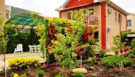 Гостевой дом «Цветущий сад»