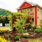 Гостевой дом «Цветущий сад» Сукко